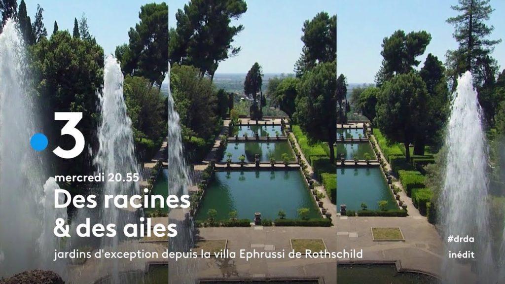 Des Racines et des ailes champs de Chanel Grasse Esprit de Gabrielle espritdegabrielle.com