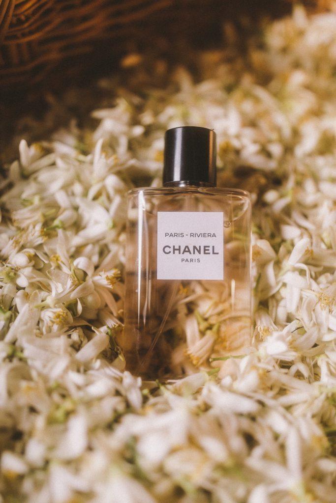Dans les champs de Chanel Néroli Esprit de Gabrielle espritdegabrielle.com