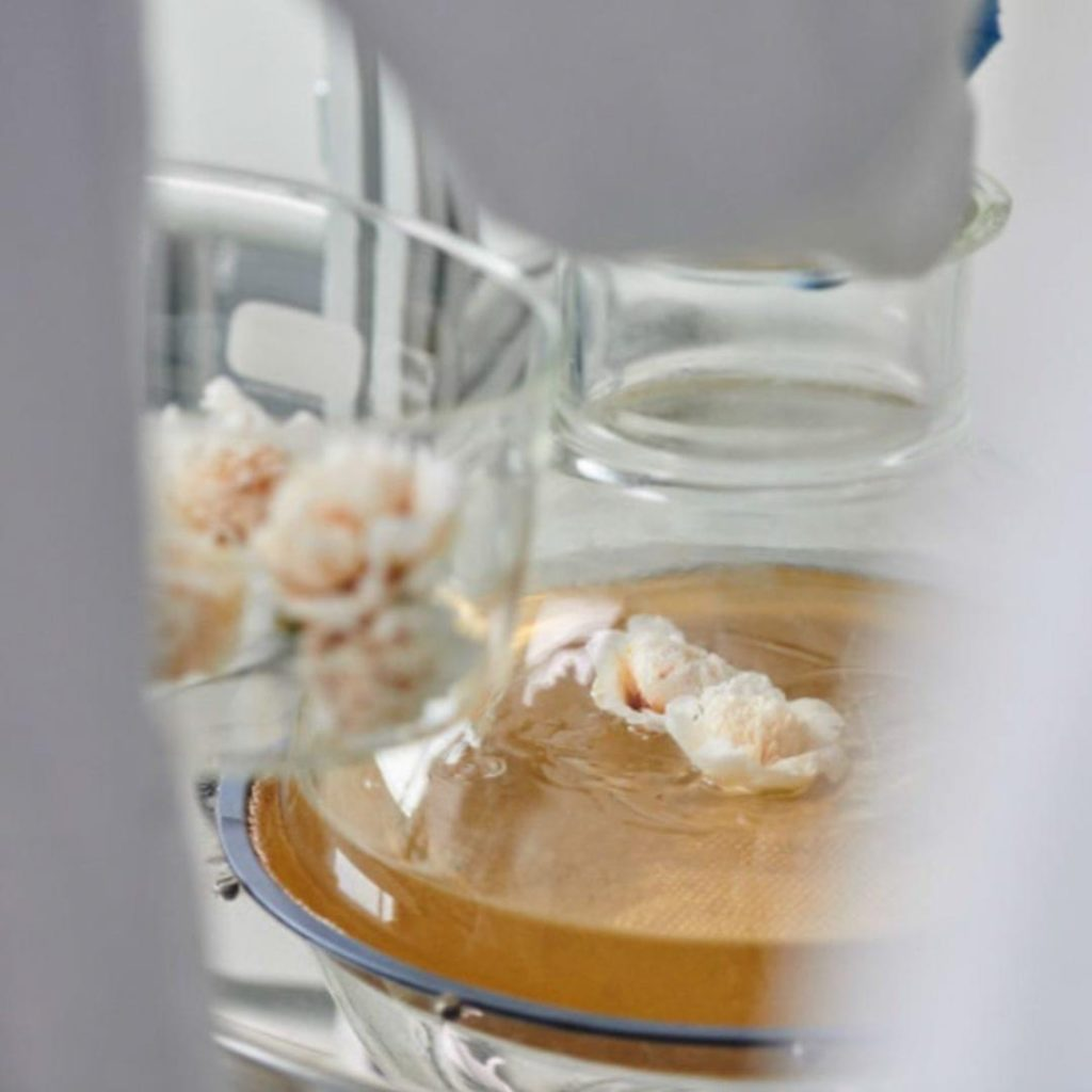 CHANEL BEYOND THE JAR Esprit de Gabrielle espritdegabrielle.com